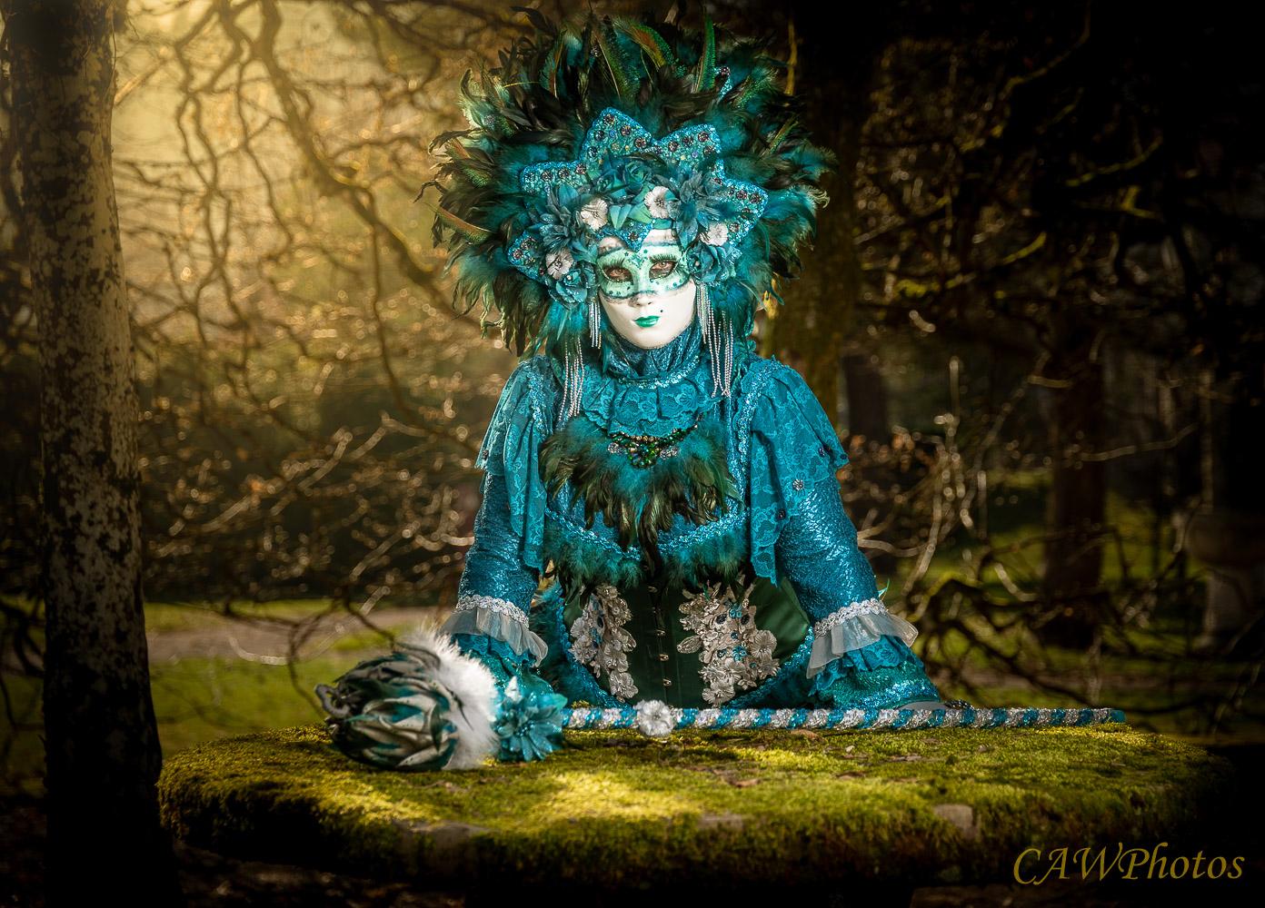 Dans les sous-bois - Photo C.A Warnier