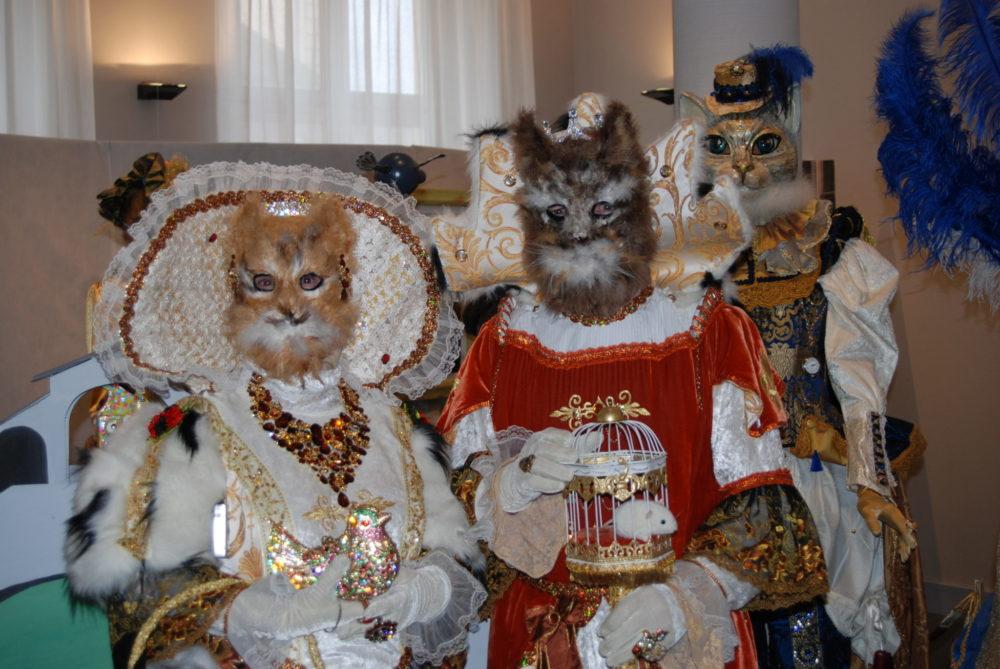 Thème des chats de Venise - Photo AL